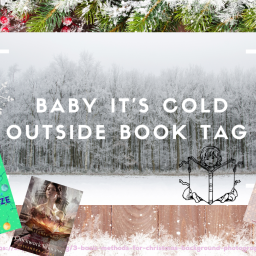 Baby It's Cold Outside Book Tag- December 2020
